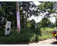 Land - land for sale @ moragolla, kandy 120p  in Ampitiya