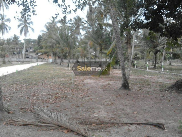 Land - LAND FOR SALE IN UDUGAMPOLA in Gampaha