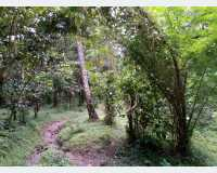 Land - land for sale in kandy - kundasale in Kundasale