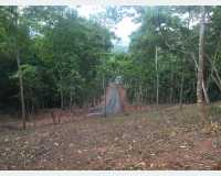 Land - land for sale in kandy in Peradeniya