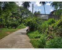 Land - land for sale in haragama (city hills)  in Kandy